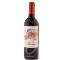 2004 Castillo Ygay Gran Reserva Especial / Rioja
